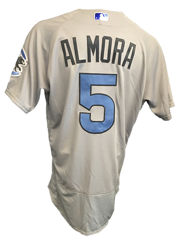 Photo of Albert Almora Game-Used Father's Day Jersey -- Cubs vs Pirates -- 6/17/17
