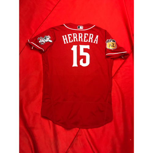Photo of Dilson Herrera -- Team-Issued Jersey -- 2017 Spring Training