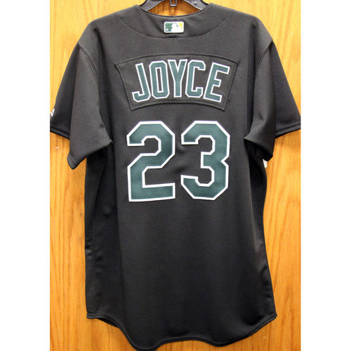 Photo of Matt Joyce Game-Used 2002 TBTC Jersey