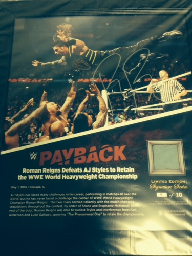 Roman Reigns SIGNED Payback 2016 15 x 17 Framed Ring Canvas Photo Collage