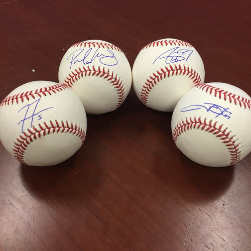 Photo of Marlins Charity Auction, Rival Package