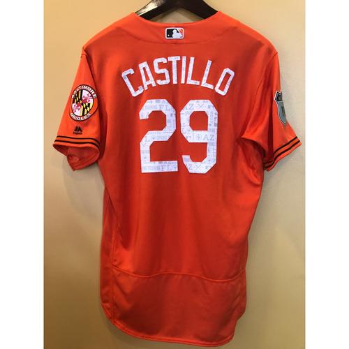 Photo of Welington Castillo - 2017 Spring Training Jersey: Game-Used