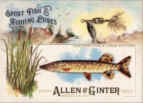 Photo of 2017 Topps Allen and Ginter Sport Fish and Fishing Lures #SFL1 Northern Pike