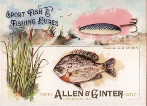 Photo of 2017 Topps Allen and Ginter Sport Fish and Fishing Lures #SFL3 Bluegill