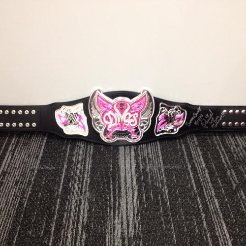 Paige SIGNED Divas Championship Replica Title