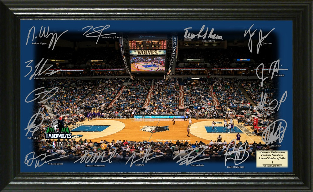 Serial #1! Minnesota Timberwolves Signature Court