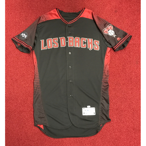 Photo of 2016 Los D-backs Team-Issued Blank Jersey Size: 44
