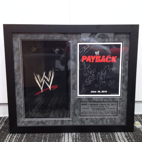 USED & FRAMED Payback 2013 Turnbuckle cover w/ SIGNED Event Logo Card