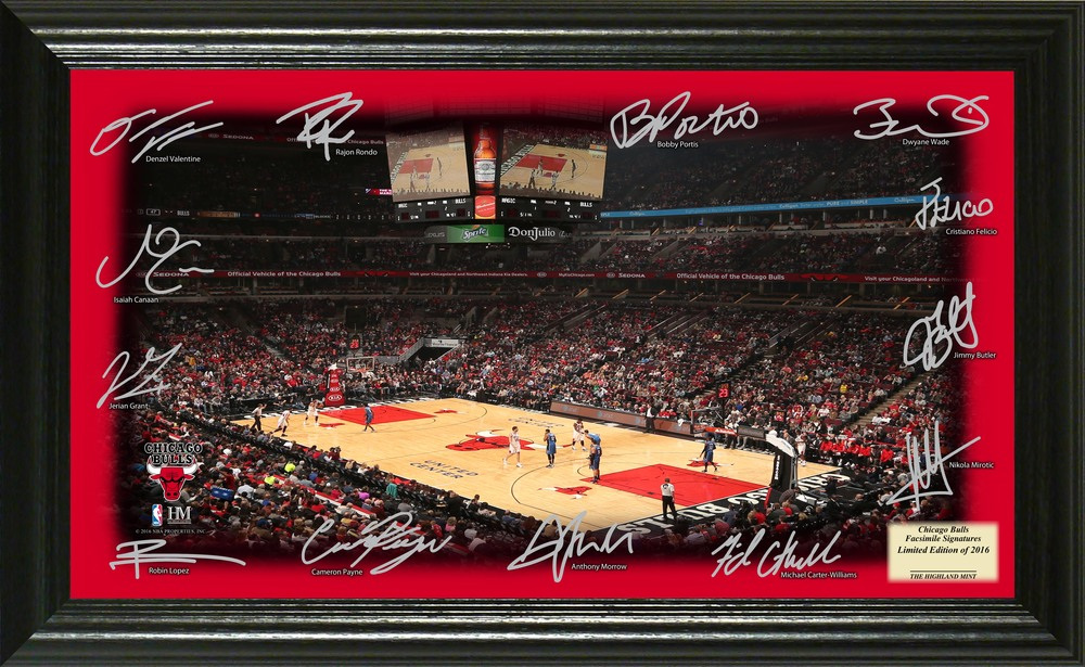 Serial #1! Chicago Bulls Signature Court