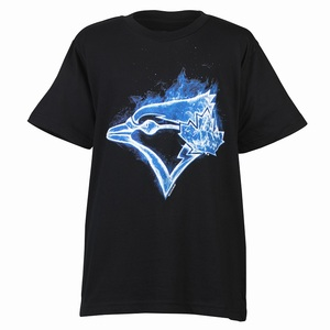Toronto Blue Jays Youth Smoke T-Shirt by Bulletin