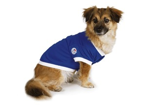 Toronto Blue Jays Pet Jersey by Hunter Canada