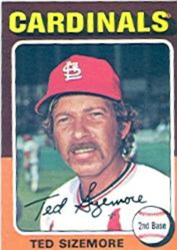 Photo of 1975 Topps #404 Ted Sizemore