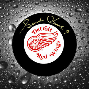 Gordie Howe Detroit Red Wings Autographed Puck GOLD