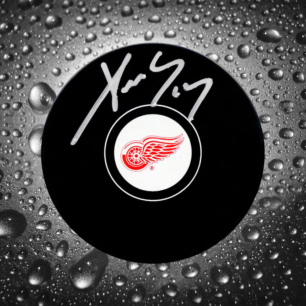 Pavel Datsyuk Detroit Red Wings Autographed Puck