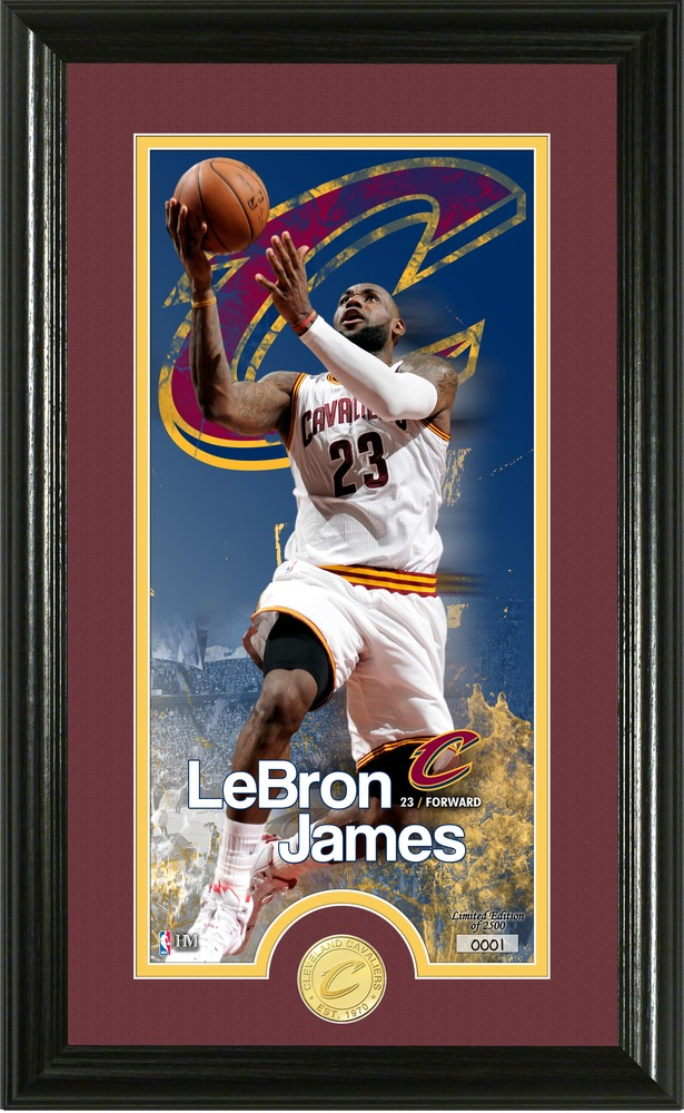 Serial #1! LeBron James