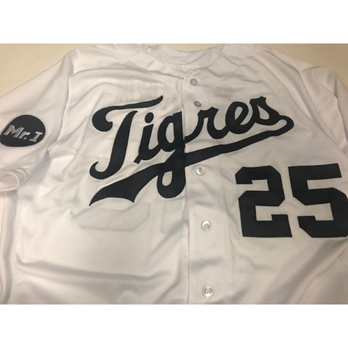 Photo of Game-Used Dave Clark Fiesta Tigres Jersey