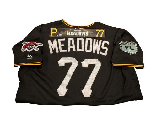 Photo of Austin Meadows Game-Used Spring Training Jersey and Locker Name Plate