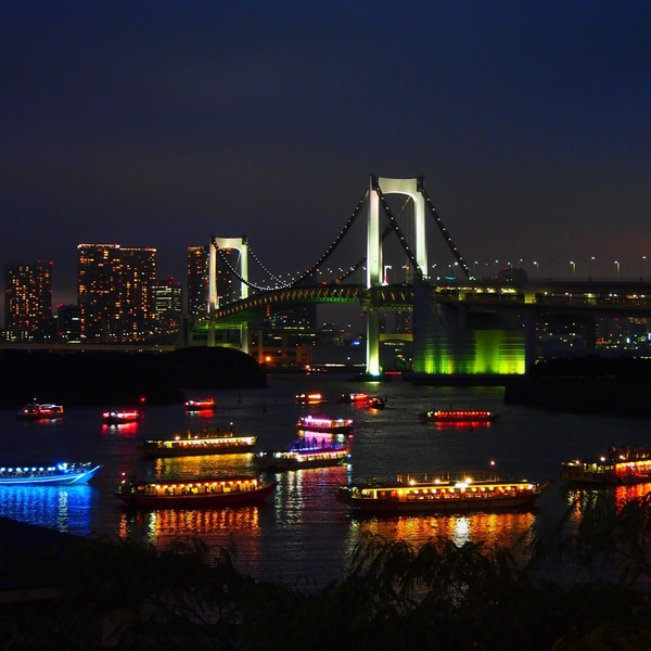 Click to view Tokyo Neon Lights Air & Sea Tour.
