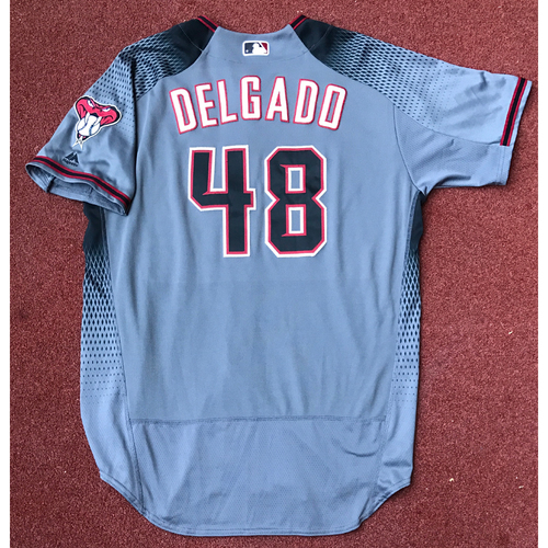 Photo of Randall Delgado Game-Used Road Jersey