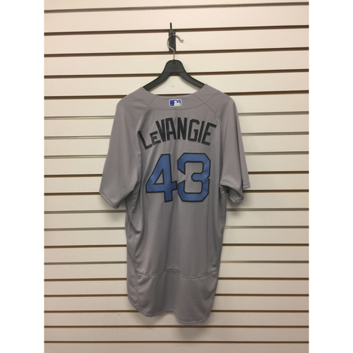 Photo of Dana Levangie Game-Used June 18, 2017 Road Jersey