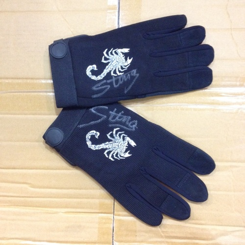Photo of Sting SIGNED Gloves