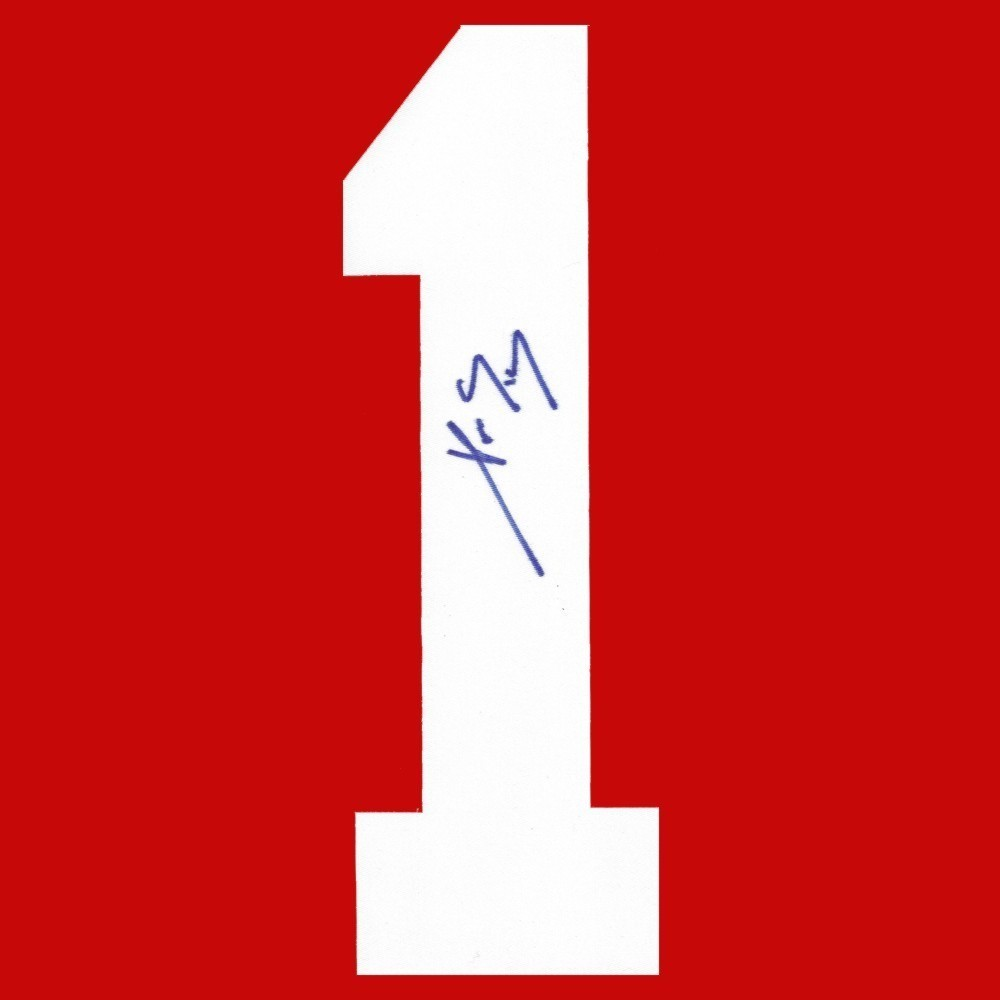 Pavel Datsyuk Autographed Detroit Red Wings Twill Jersey Number