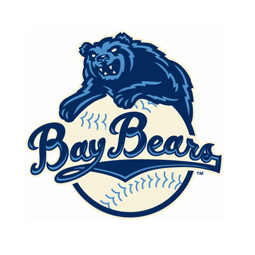 Photo of UMPS CARE AUCTION: Mobile BayBears (Angels AA) Field Level Suite for 12 plus First Pitch and 2 VIP Parking Passes