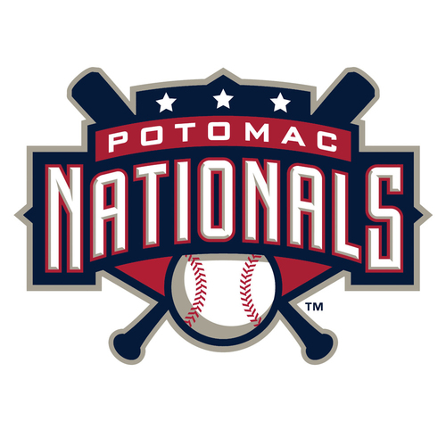 Photo of UMPS CARE AUCTION: Potomac Nationals (A Adv) 4 Grandstand Tickets