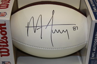 NFL - LIONS MIKE FURREY SIGNED PANEL BALL