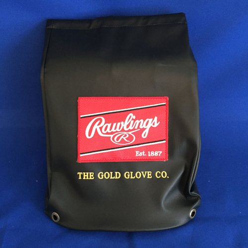 Photo of UMPS CARE AUCTION: Rawlings Premium Embroidered Glove Bag