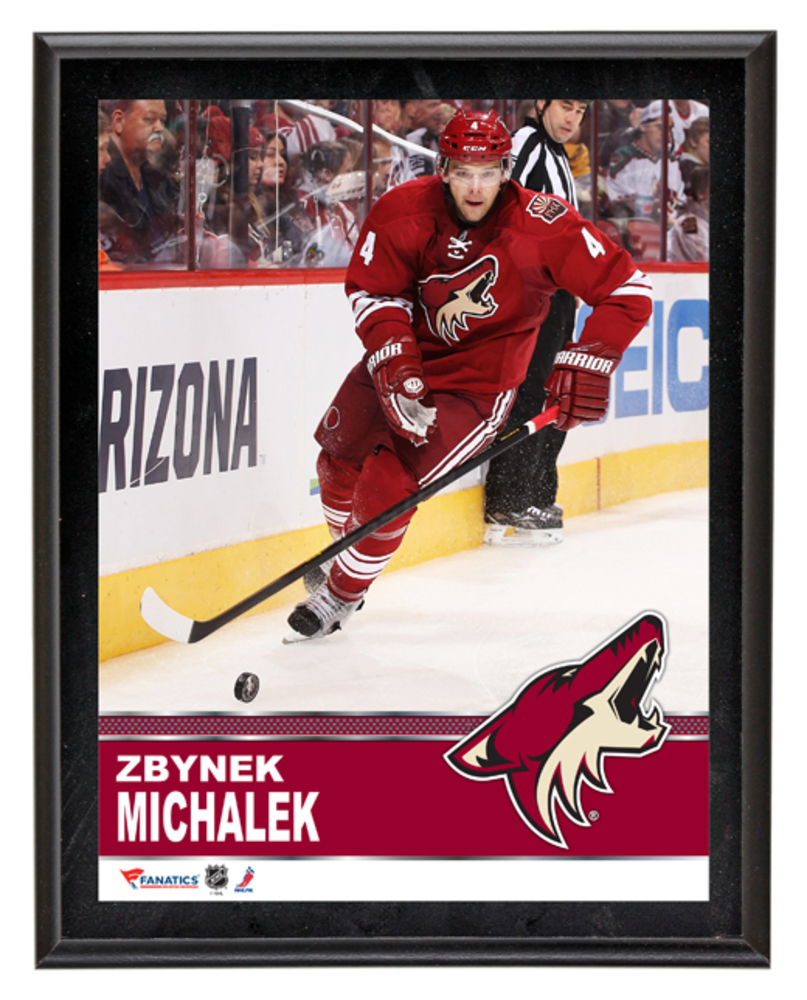Zbynek Michalek Arizona Coyotes Sublimated 10