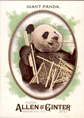 Photo of 2017 Topps Allen and Ginter #276 Giant Panda