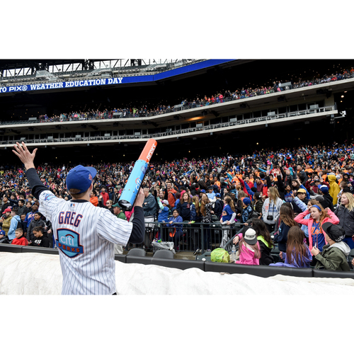 Photo of Amazin' Auction: Be a Member of the Citi Perks Patrol for a Game  - Lot # 30