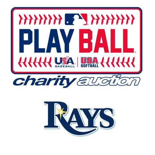 Photo of Play Ball Charity Auction: Tampa Bay Rays - Hitting Lesson with Brad Miller & A Rays' Coach