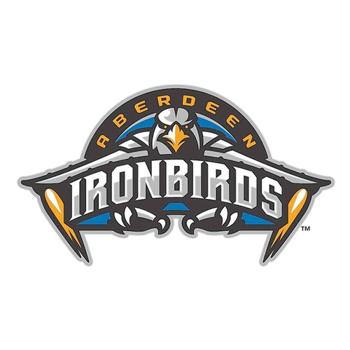 Photo of UMPS CARE AUCTION: Aberdeen Ironbirds (Orioles SS) 10 Tickets plus On-Field Photo