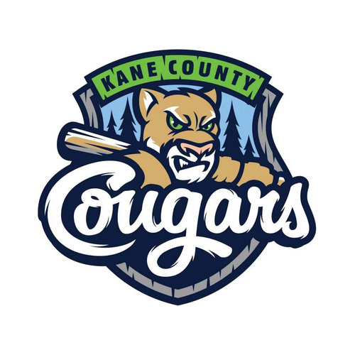 Photo of UMPS CARE AUCTION: Kane County Cougars (Dbacks A) 4 Strike Zone Premier Seat Tickets