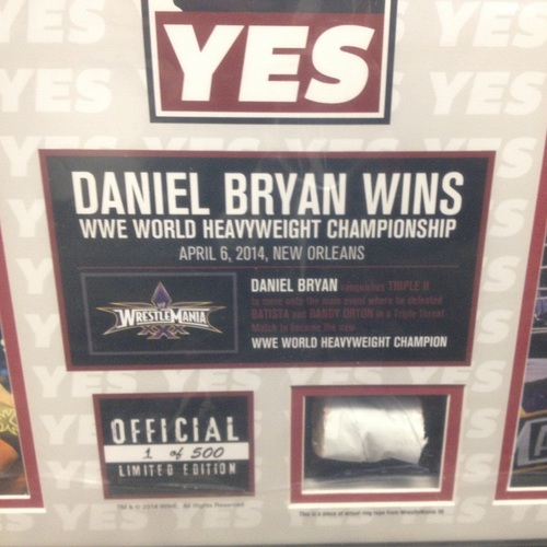 Daniel Bryan WrestleMania 30 Signed Commemorative Plaque ...
