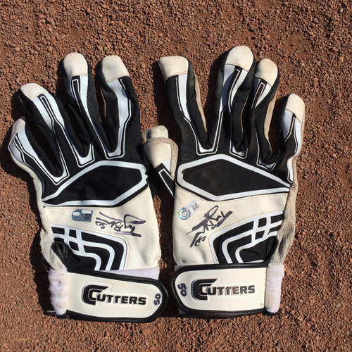 Photo of San Francisco Giants - Autographed Batting Gloves - Ty Blach