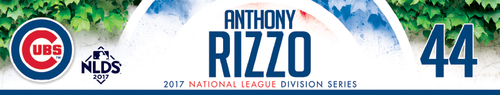Photo of Anthony Rizzo Game-Used Locker Nameplate -- NLDS Game 3 -- Nationals vs. Cubs -- 10/9/17
