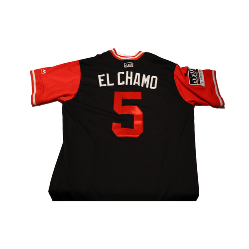 "Photo of Adrian ""El Chamo"" Sanchez Washington Nationals Game-Used Players Weekend Jersey"