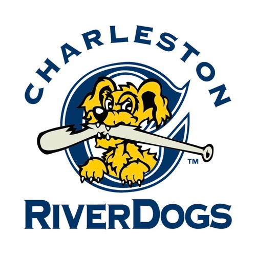 Photo of UMPS CARE AUCTION: Charleston RiverDogs (Yankees A) Family Four Pack of Tickets, Hot Dogs, Sodas, and Chips