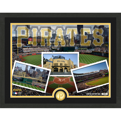 "Photo of Pittsburgh Pirates ""Team Pride"" Bronze Coin Photo Mint - MLB.com Auctions Exclusive"