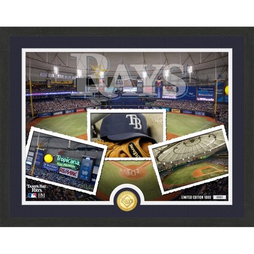 """Photo of Tampa Bay Rays """"Team Pride"""" Bronze Coin Photo Mint - MLB.com Auctions Exclusive"""