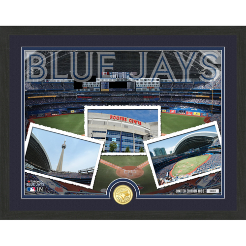 "Photo of Toronto Blue Jays ""Team Pride"" Bronze Coin Photo Mint - MLB.com Auctions Exclusive"
