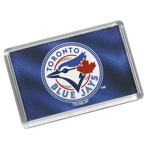 Toronto Blue Jays Primary Logo Mesh Magnet by Sports Vault