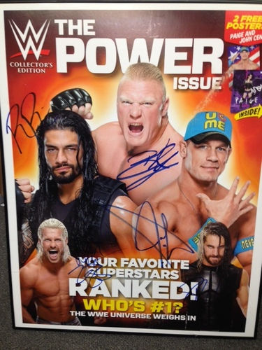 Photo of Roman Reigns, Brock Lesnar, Seth Rollins, John Cena, & Dolph Ziggler SIGNED Framed Poster
