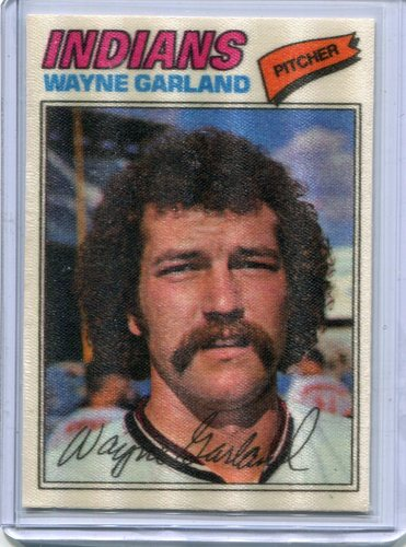 Photo of 1977 Topps Cloth Stickers #17 Wayne Garland