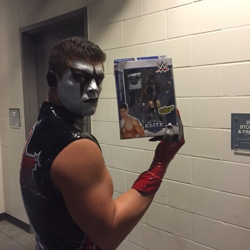 Photo of Stardust SIGNED Series 32 Cody Rhodes Figure