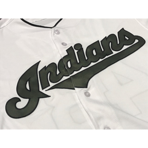 Photo of Yan Gomes Game Worn Memorial Day Jersey