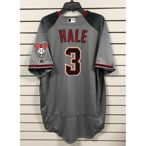 Photo of Chip Hale Team-Issued Road Jersey